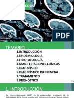 neurocisticercosis-151016095807-lva1-app6891.pdf