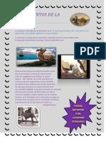 Fundamentos de La Ecología