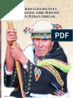 Legislación Guatemalteca e Internacional sobre  Derechos (1).pdf