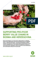 Supporting Pro-Poor Berry Value Chains In Bosnia And Herzegovina