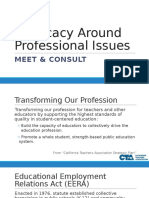 advocacy around professional issues