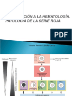 TEMA 1. INTRODUCCIÓN HEMATOLOGÍA. PATOLOGÍA DE LA SERIE ROJA
