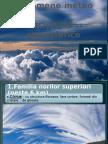 Precipitatiile Atmosferice