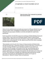 Puerto Rico Daría El Ejemplo a Nivel Mundial Con El Bosque Modelo
