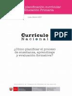 Cartilla Planificacion Curricular - documento de trabajo MINEDU