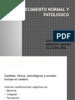 Envejecimiento Normal y Patologico-expo