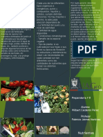 Triptico de NutrientesPP