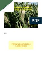 Milho Safrinha 2016 Doenças Foliares Gisèle Fantin