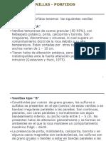 Tipos de Venillas en Porfidos