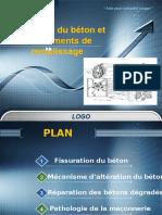 Pathologie Du Béton Et Des Éléments de Remplissage