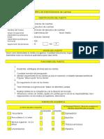 Perfil de puesto ( Formato)