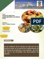 SPES 2013-SECADO SOLAR_Juan Molina.pdf