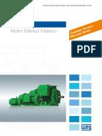 WEG-w22-motor-trifasico-tecnico.pdf
