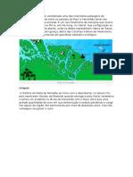 O Delta Do Parnaíba é Considerado Uma Das Mais Belas Paisagens Do Mundo