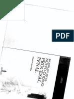 Modelos en el nuevo codigo procesal penal   6.70 sin anillar.pdf