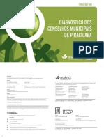 528f44d87d146_diagnostico_conselhos_1.pdf