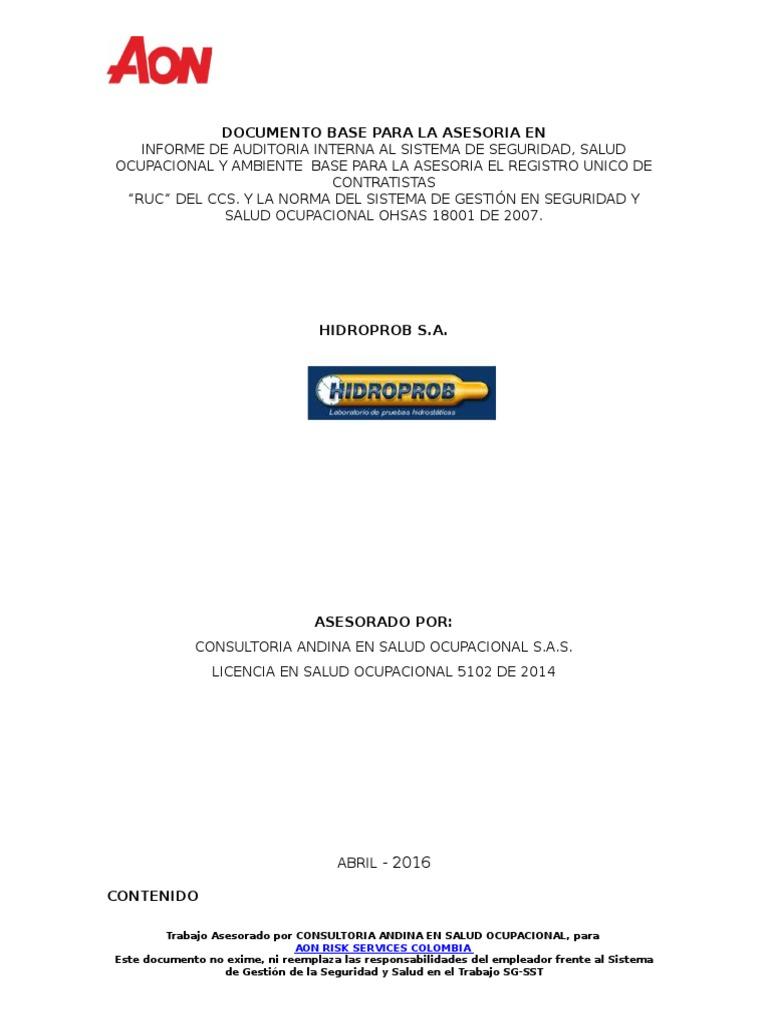 Informe Técnico de Auditoria Interna RUC -Ohsas - Hidroprob - V1