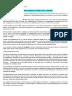 Clase Tipeada Fisiopato Cancer 2016 (Modulo 1 y 2)