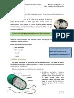 celula2.pdf