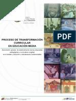 Proceso de Transformacion Curricular EM-29!08!16(1)