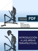 Introduccion a Las Areas Terapeuticas