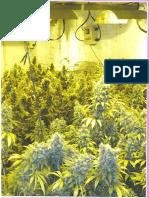 #2 Marijuana Horticulture - The Indoor-Outdoor Medical Growers Bible