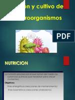 Nutrición y Medios de Cultivo