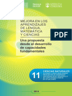 Fas 11 Csnaturales