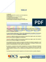 TEMA 19 ocs.pdf