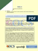 TEMA 17 ocs.pdf