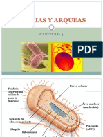 Cap 3. Bacterias y Arqueas