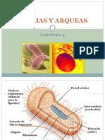 Cap 3. Bacterias y Arqueas