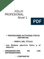 DESARROLLO PROFESIONALúltimo.doc