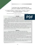 La Historia Natural Del Aclaramiento de Espermatozoides en El Semen Tras La Vasectomia