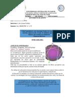 Documento de Apoyo Eneagrama