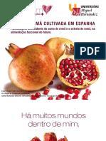 Româ.pdf