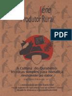 1997_Modolo_Manual ESALQ_Cultura do quiabeiro_técnicas simples para hortaliça resistente ao calor.pdf