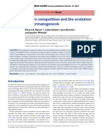 Sperm competition and the evolution of spermatogenesis