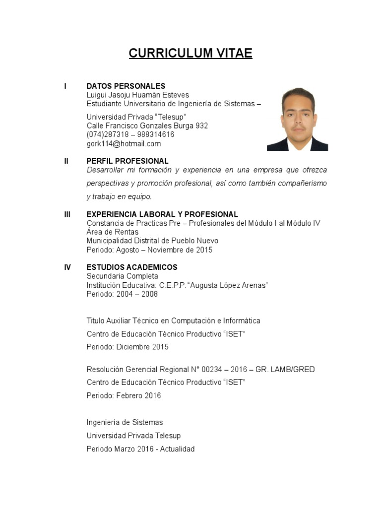 Curriculum Vitae LuHuEs (Simple)