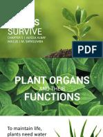 How plants survive