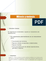4.- Mitosis y Meoisis