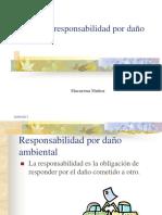 Clase11_Responsabilidad ambiental