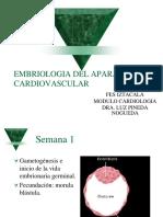 Embriologia Del Aparato Cardiovascular (1)