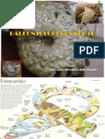 249313189-Paleontologia
