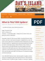 EEK! Spiders!