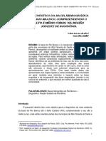 Bacia Rio Branco.pdf