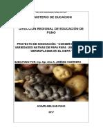 conservacion de variedades nativas de papa para un banco de germoplasma en el isepa.docx