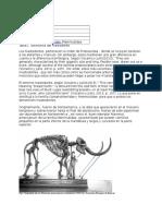 Mastodonte s