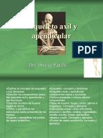 Esqueleto axil y apendicular clase 2  2016.ppt