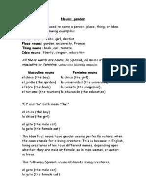 Spanish Grammar | Grammatical Gender | Adjective